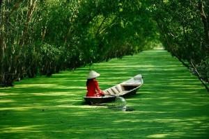Mekong Deltası Saygon Vietnam