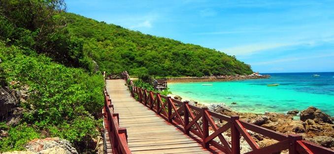 Pattaya Mercan Adasi